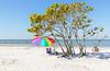 Honeymoon Island State Park (NorthFla) Tags: florida dunedin honeymoonislandstatepark floridastateparks gulfofmexico beachumbrella