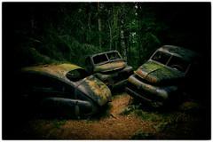 Båstnäs bilkyrkogården 001