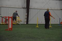 DSC_6617 (jaimekay16) Tags: dog agility k9x k9 xpress leander texas