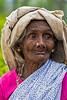 Tea Leaf Picker, Rothschild Tea Estate, Sri Lanka (bfryxell) Tags: pussellawa rothschildteaestate srilanka teapicker worker