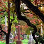 """Cincinnati – Spring Grove Cemetery & Arboretum """"Autumn At Old Oak Tree"""