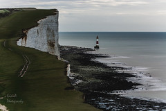 Dawn at Beachy Head (ed027) Tags: ifttt 500px sunrise morning sea water beach coast coastline lighthouse ocean path beautiful grass calm england shore seascape long exposure seashore shoreline chalk cliffs coastal horizon over eastbourne headland leading line south rocky white cliff feature