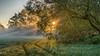 sunrays and dewdrops (ralfkai41) Tags: ngc sunbeam sonnenstrahlen sunrise sun nebel landschaft sunrays sonne mist nature sonnenaufgang outdoor landscape fog natur dunst
