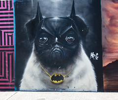 Batpug mural on Bondi Beach (HaveClothesWillTravel) Tags: mural pug batman batpug cute funny autralia travel sydney bondibeach