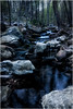 Stream (ronnymariano) Tags: moss landscape plants nature scenics harrimanpark blurredmotion beautyinnature flowing woodland trees rockobject flowingwater stream waterfall river forest tree stoneobject outdoors water freshness city 2016 mountain stonypoint newyork unitedstates us