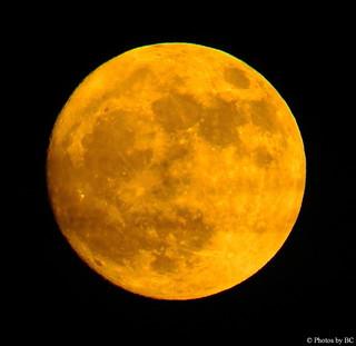 December Moon Rising.