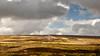 Dartmoor 07 (L I C H T B I L D E R) Tags: rocks stones steine felsen england sheepstor dartmoor hill hügel sky hiking wandern devon landscape landschaft himmel gras abhang