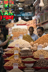 india_742 (Diferdin) Tags: india rajasthan solo traveling agra new delhi taj mahal