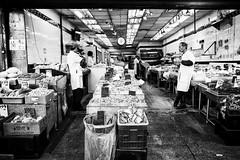 Chinatown (TS_1000) Tags: blackandwhitephotography sw bnw market fangfrisch frischerfisch fisch fish 🔴 28mm summilux q leica chinatown manhattan newyork