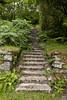 Burrator Dam, Dartmoor (Sascha Selli) Tags: dartmoor burratordam england europe europa uk canon1dsmarkiii