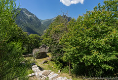 Verzasca valley 13170706-untitled-507.jpg (flia gitterle) Tags: verzascavalley summer2017 swissalps lavertezzo mountains switzerland landscapes europe familiagitterlecantillo clearwater
