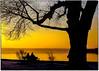 P1010114bb (fotokunst_kunstfoto) Tags: stimmung abendstimmung mood allxpressus silhouette silhouett silhouetten schattenbilder umriss kontur konturen schattenriss