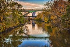 Don River (A Great Capture) Tags: discoverthedonvalley explorethedonvalley discoverthedon walk lowerdontrail toronto landscape scenic autumn fall bridges donvalley reflections donriver don agreatcapture agc wwwagreatcapturecom adjm ash2276 ashleylduffus ald mobilejay jamesmitchell on ontario canada canadian photographer northamerica torontoexplore automne herbst autunno 2017 city downtown lights urban weather colours colors colourful colorful light sun sunny sunshine eos digital dslr lens canon 70d waterscape wet water agua eau stream river reflection mirror glass outdoor outdoors vibrant cheerful vivid bright leaves leaf foliage autumnleaves bridge