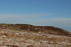 bowes moor (kokoschka's doll) Tags: moorhen heather pennines snow crag hill winter stainmore