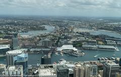 Australia 11-2017 (daver6sf@yahoo.com) Tags: australia cody vacation sidneytower