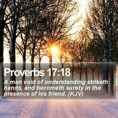 Daily Bible Verse - Proverbs 17:18 (daily-bible-verse) Tags: empathy motivate lockscreens motivation encouraging lastdays wordofwisdom