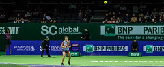 20171025-0I7A2032 (siddharthx) Tags: singapore sg simonahalep carolinegarcia elinasvitolina wtasingapore tennis womenstennis singaporeindoorstadium power grace elegance contest competition 1seed 4seed 6seed 8seed champions rally volley serve powerfulserves focus emotions sports wtatour porscheservesspeed bnpparibas stadium sport people wta winner sign crowd carolinewozniacki portrait actionshots frozenintime