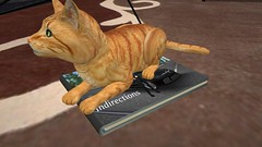 Mine Now (alexandriabrangwin) Tags: alexandriabrangwin secondlife 3d cgi computer graphics virtual world photography yourimagination book indirections funny silly comic story ginger cat sitting top marketplace own house carpet rug pet roscoe