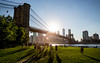 Brooklyn Bridge sunset [Explored] (Franck_Michel) Tags: bridge shadow sun park buildings usa bird grass river skyline
