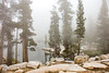Heather Lake Shrouded in Fog (philia10) Tags: sequoia lake landscape canon70d lightroom