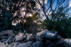 The old wall - Ph #lorenzomuscoso #landscape #malta #Marsaxlokk #nature #stpeterpool #ppol #people #color #cloud #sony #sonyalpha #sonyitalia (muscosolorenzo) Tags: instagram ifttt malta valletta valletta2018 stjulian gozo stpaul landscape boats culture suggestion feelings nature cities folk castle urban