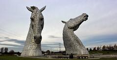 The Kelpies by Day (Yorkie Chris) Tags: kelpies thekelpies helixpark scotland lovescotland falkirk sculptrues horses steel metal