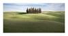 Incontro Famoso (W.Utsch) Tags: toscana cypress landschaft tuscany minimal minimalism iconographic sony a7rmk2