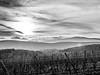 L1040085 (Ledesastre) Tags: alsace est photographie photographe leica dlux109 vignes nature countryside campagne sun lumière