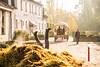 Rouge-Cloître Automne 2016 (saigneurdeguerre) Tags: europe europa belgique belgië belgium belgien belgica bruxelles brussel brussels brüssel bruxelas ponte antonioponte aponte ponteantonio saigneurdeguerre canon eos 5d mark iii 3 auderghem rougecloitre abbaye abdij automne herfst fall
