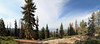 Kings Landing (H. P. Filho) Tags: dslr apsc canoneosrebelt5i canonefs1018mmf4556isstm digitalphotoprofessional imagecompositeeditor panorama stitched cropped california kingscanyon nationalpark trees sequoias sky clouds grass fav 50view 2fav 3fav 5fav 100view 250view 500view faved