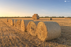 All lined up and ready to go (technodean2000) Tags: all lined up ready go golden hour hay bales sunset field ogmore south wales uk nikon d610 lightroom