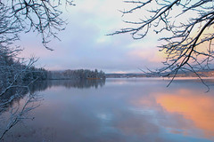 Tranquil Lake (bjorbrei) Tags: water lake shore forest trees branches winter snow maridalen maridalsvannet oslo norway reflections