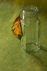 When you're alone... (alideniese) Tags: closeup stilllife 7dwf leaf jar bokeh flora pattern glass colour colourful green yellow orange red light sidelit alideniese daylight spring hanging