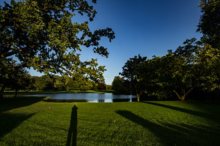 Park and Pond