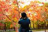 Autumn Glow (Mansoor Bashir) Tags: autumn trees orange green yellow light shadows candid portrait nature park islamabad pakistan