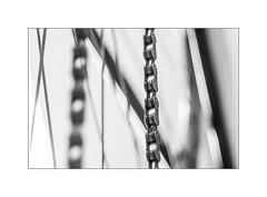 Gliederkette (Panasonikon) Tags: panasonikon olympusomdem1 bw fahrrad fahrradkette gliederkette schärfentiefe bokeh linien lines makro hmm zeiss tessar5028 altglas sw