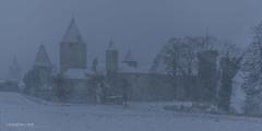 Tempête de neige sur le château (Switzerland) (christian.rey) Tags: château chenaux estavayerlelac fribourg broye tempête neige tempes snow schnee castle schloss sony alpha a7r2 a7rii 1650