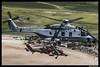 COPYRIGHT FRANCISCO FRANCÉS TORRONTERA. (13) (Francisco Francés Torrontera (Oroel)) Tags: airbushelicopter airbushelicopterec665tigrehad airbushelicopternh90 airbus eurocopter eurocopterec665tigrehad europeanattackhelicopter helicopter helicopters ha28hap attackhelicopter tigre tigrehad nh90 airbusnh90 caiman cargohelicopter ngc nationalgeographic natohelicopter gettyimages getty spanish spanisharmy spanisharmyhelicopter