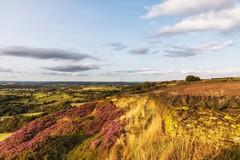 Huddersfield Hills Aug 2017 018 (Mark Schofield @ JB Schofield) Tags: hills huddersfield moors moorland pennines pennineway wessenden yorkshire wessendenhead landscape eos 5dmk4 canon