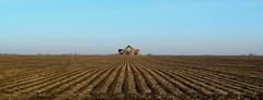 """I'd rather be on my farm than be emperor of the world.""--George Washington (David Sebben) Tags: george washington quote farm barn lines knox illinois panoramic"