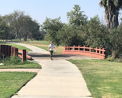 018 Across The Bridge (saschmitz_earthlink_net) Tags: 2017 california longbeach eldorado orienteering laoc losangelesorienteeringclub losangeles losangelescounty eldoradoeastregionalpark park parks