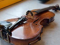 Violin (robárt shake) Tags: violin geige kunst musik kultur nostalgic historical music vintage old nostalgisch klassik classic musizieren holz wood ahorn fichte ebenholz kirschbaumholz culture