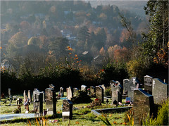 321.3 View from the cemetry (Dominic@Caterham) Tags: trees autumn cemetry headstones sunligt shadows houses mist