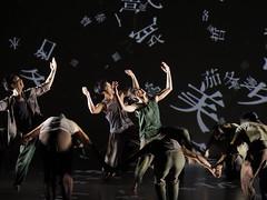 _9041556 (黎島羊男) Tags: 雲門 關於島嶼 林懷民 formosa cloudgatedancetheatre cloudgate dance theatre linhwaimin olympus em1markii zuiko 1454mm