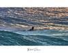 P9076 (Roberto Silverio) Tags: sup robertosilveriophotography olympusphotography olympusitalia esolympus getolympus lovesurfing surfing surfer longboard colors swell olympuskameras olympusuk