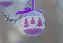 'Tis the Season (~DGH~) Tags: 2017 alberta canada christmas edmonton pentaxk50 ornament ribbon snow trees winter woods ~dgh~ walkinthewoods
