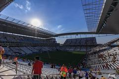 Copa do Mundo - 20140626 - 3.jpg (Fippo Gomes) Tags: belgica belgium canon copadomundo sl1 soccer worldcup