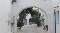 ΜΥΚΟΝΟΣ-ΤΗΝΟΣ 077