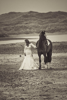 unexpected sight on Newburgh beach on a bitterly cold winter day - woman, wedding dress and horse in black & white. Aberdeenshire, Scotland
