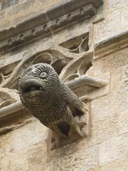 Mallorca - Kathedrale von Palma (muckypuppy) Tags: espana spanien spain majorca malle balearen architektur architecture arquitectura kirche church wasserspeier gargoyl